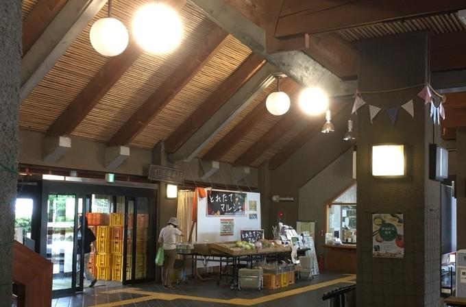 参加者募集!有機農業ボランティアやってみました「足立都市農業公園」(東京都・足立区)