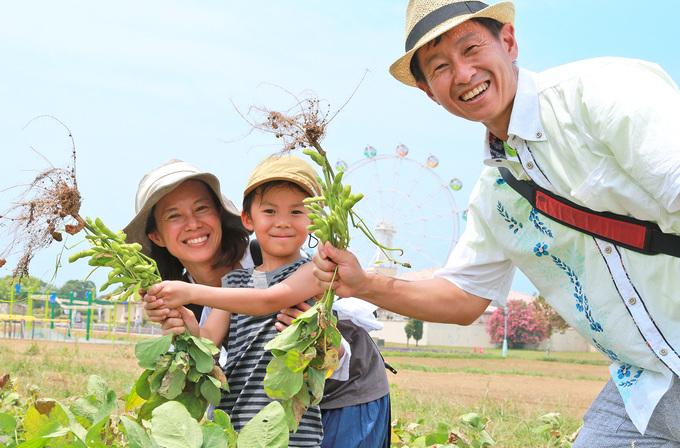 三浦半島の農と海の体験パーク 「長井海の手公園・ソレイユの丘(神奈川県・横須賀市)」