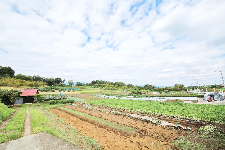 「里山シェア大井松田」の収穫体験できる畑
