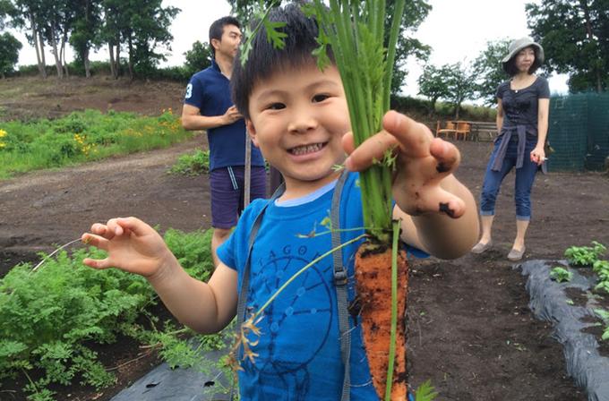 野菜作り教室